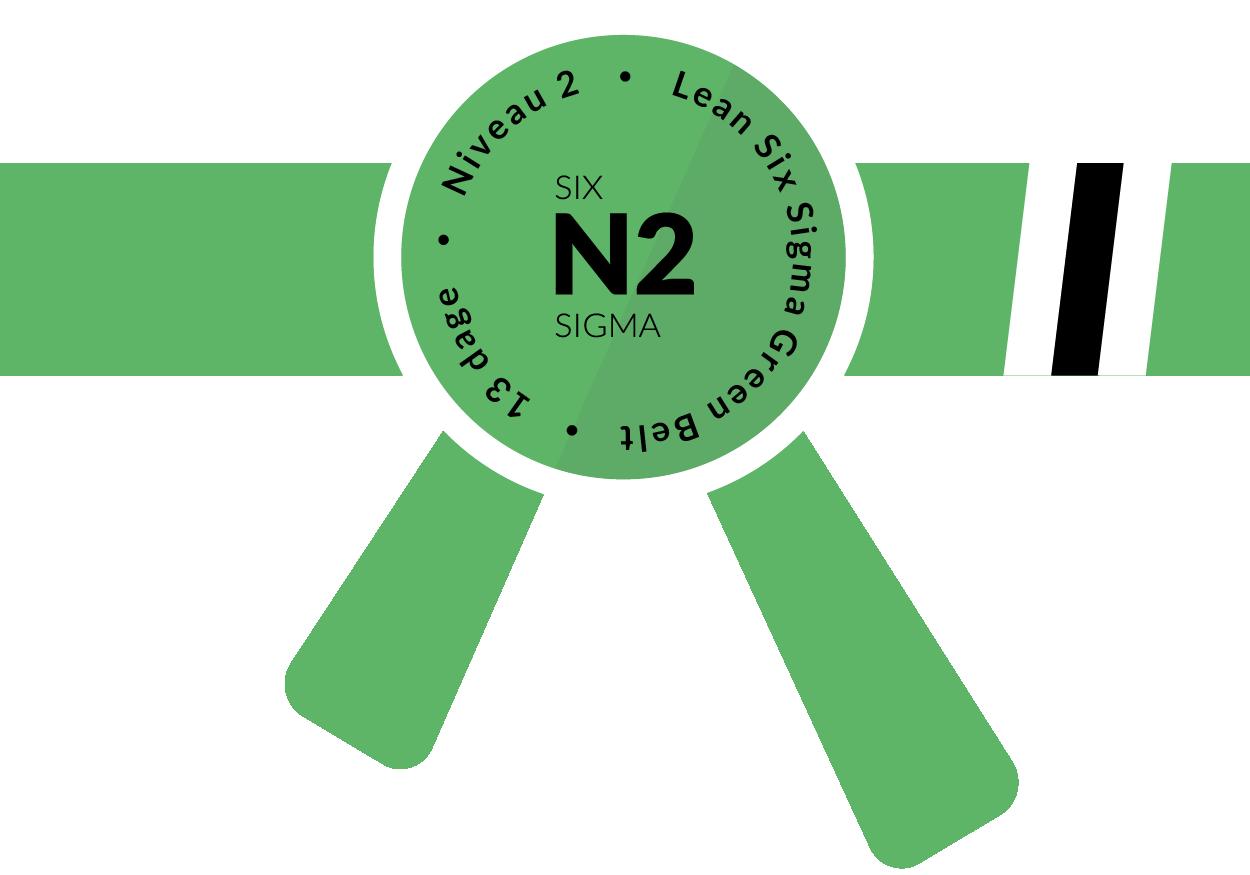 Niveau 2, Lean Six Sigma Green Belt, 13 dage